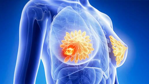 el laboratorio de bioingeniería realiza proyecto que permite detectar enfermedades de la piel