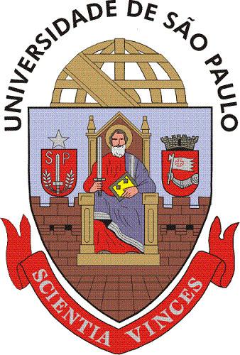Instituto de Ciencias Matematicas e de Computacao da Universidade de Sao Paulo