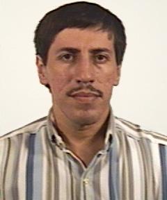 ALBERTO MOISES RAMON FERNANDEZ BRINGAS