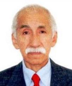 JOSE CARLOS HUAYHUACA DEL PINO