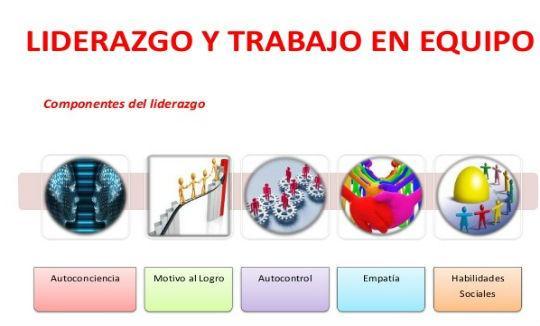 Preparación > Equipo de Diseño | NSDS GUIDELINES